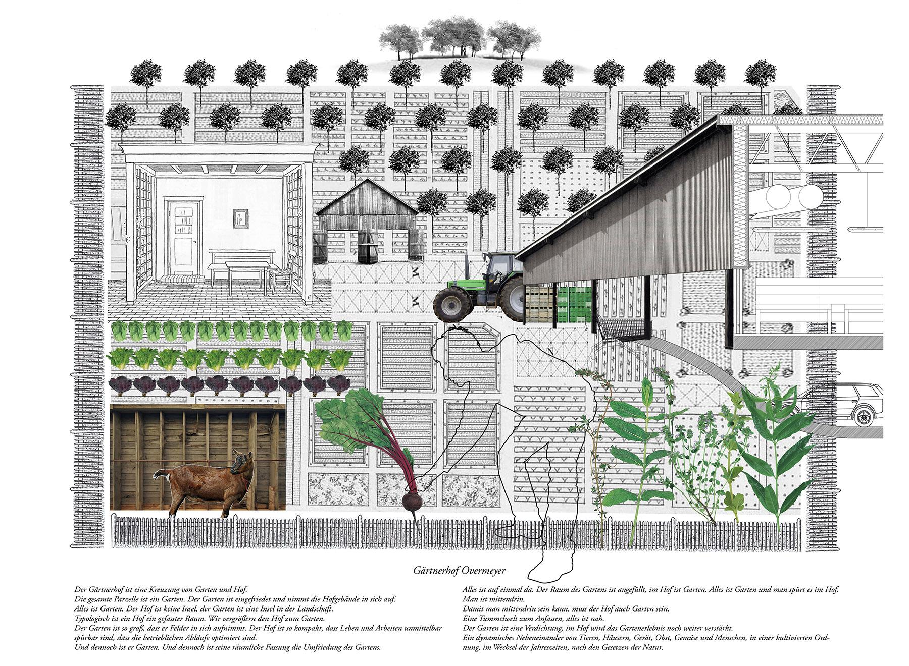 hybrid garden, farmyard space